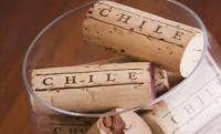 Винные туры в Чили