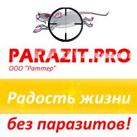 "ООО ""Раттер"""