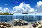Туристический информационный сайт  о черноморских государствах и городах-курортах